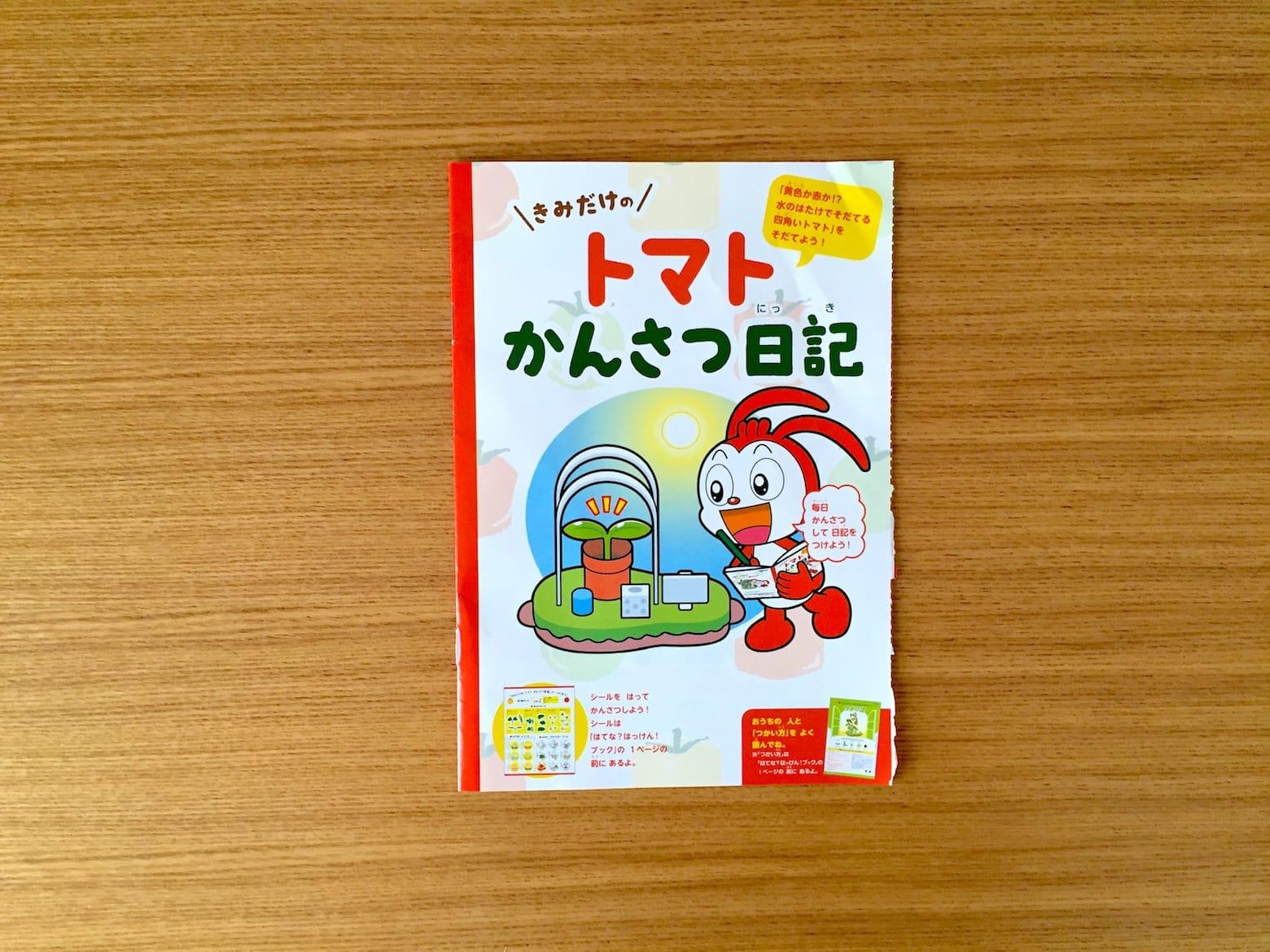 トマト01 観察日記01